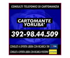•.¸★¸.••¸★¸.• Cartomante Yoruba' •.¸★¸.••.¸★¸.•