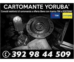 Consulti con il Cartomante Yoruba'