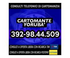 '•.¸(¯`'•.¸*♥♥♥♥ Cartomante Yoruba' ♥♥♥♥*¸.•'´¯)¸.•'