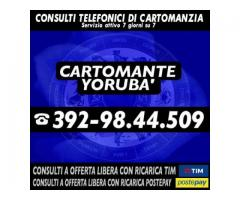 ▂ ▃ ▄ ▅ ▆ ▇ █ Cartomante Yorubà █ ▇ ▆ ▅ ▄ ▃ ▂